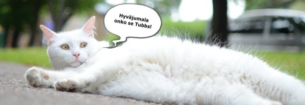 cropped-header_tubbbe1
